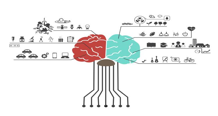 How Human Brain Function